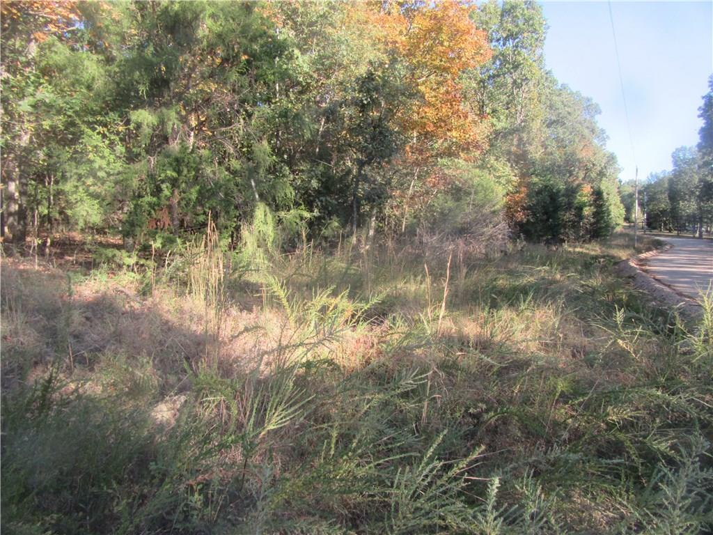 Gorgeous Fall colors prominent on this beautiful 13.6 acre tract on County Road 114.