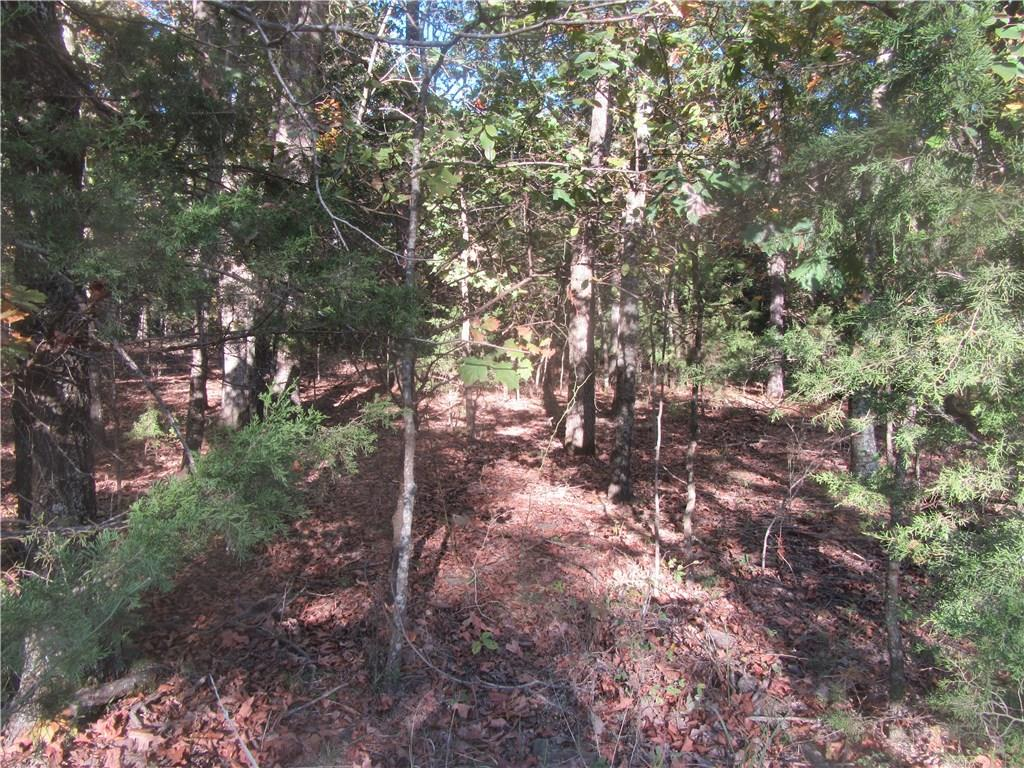 Very deep footage on this acreage tract--nicely wooded and mostly flat. Great location for home in the woods.